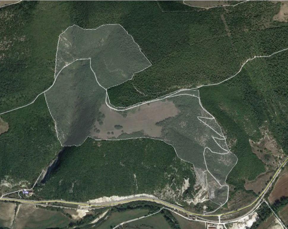 Area erpetologica